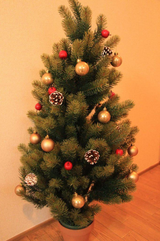 ピアノ初心者でも弾けるクリスマスソングの無料楽譜特集 ピアノ